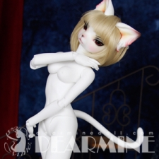 DL girl body cat type 2