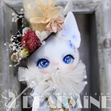 White day ~ Blue rose PICASSO bean (DOLK only)