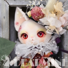 Valentine day ~ Red rose PICASSO bean (DOLK only)