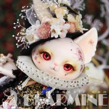 Red Rose PICASSO (For Dollism Plus TOKYO)